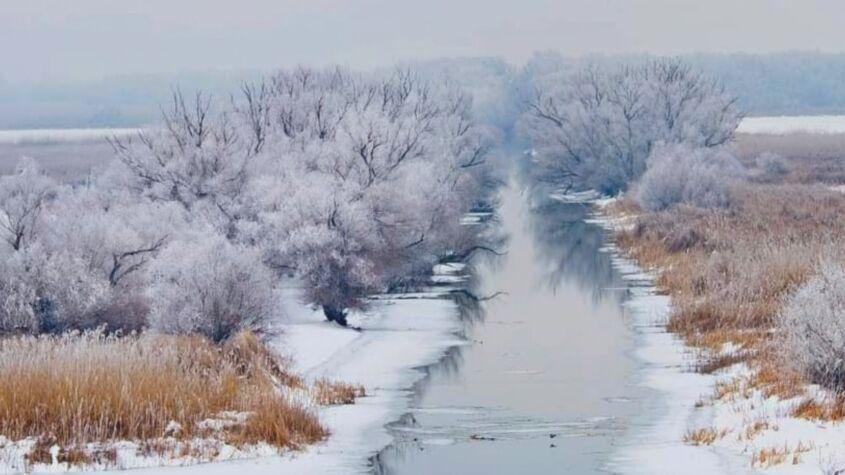 Peisaj de basm în Delta Dunării