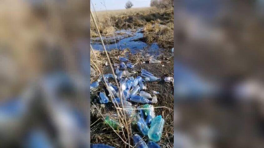 Imagini revoltătoare în Delta Dunării, plină de gunoaie