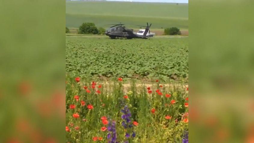 Aterizare de urgență în… rapiță