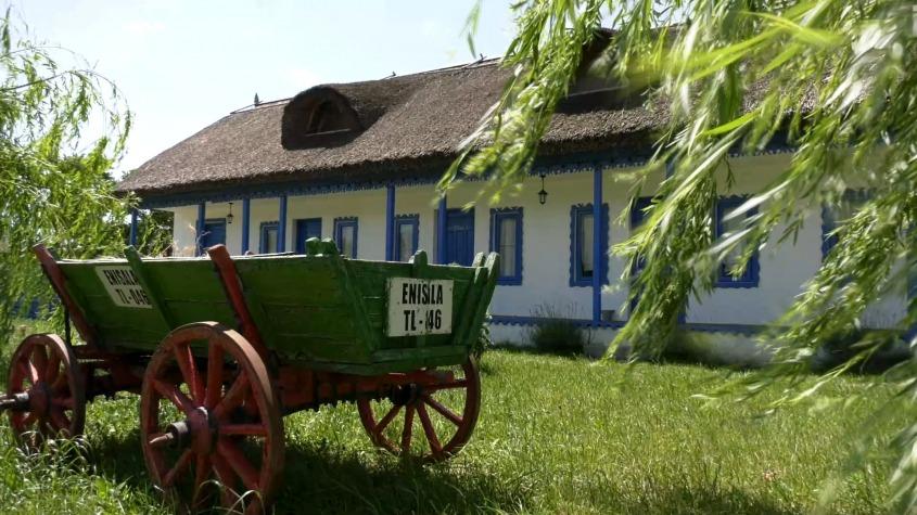 Colț de rai în Delta Dunării